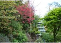 image a la une Institut bouddhique Truc Lam
